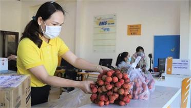 Bưu điện toàn tỉnh Lâm Đồng hỗ trợ tiêu thụ hơn 13 tấn vải thiều Bắc Giang
