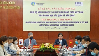 Vietnam and ROK strengthen agricultural cooperation