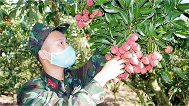 Tuổi trẻ Bộ CHQS tỉnh hành quân xanh giúp đỡ các gia đình hoàn cảnh khó khăn