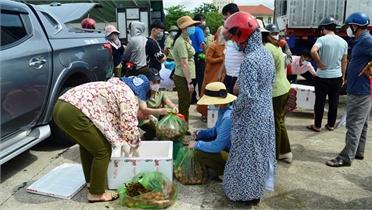 Quảng Bình hỗ trợ tiêu thụ gần 100 tấn vải thiều Bắc Giang