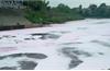 Bắc Ninh: Xử phạt 8 doanh nghiệp vi phạm quy định bảo vệ môi trường gần 2,5 tỷ đồng