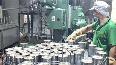 Công ty cổ phần Xuất nhập khẩu Vifoco chế biến 1 nghìn tấn vải thiều Lục Ngạn