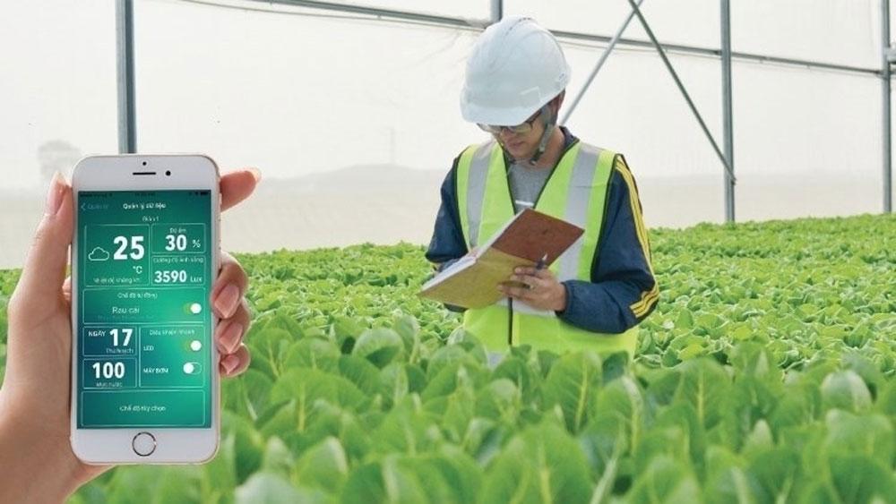 Vietnam to build mobile app to diagnose plant diseases