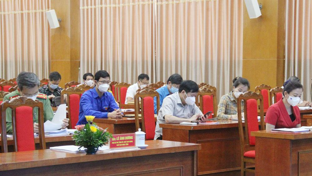 Lê Ánh Dương, bầu cử, HĐND, chương trình hành động, ĐBQH.