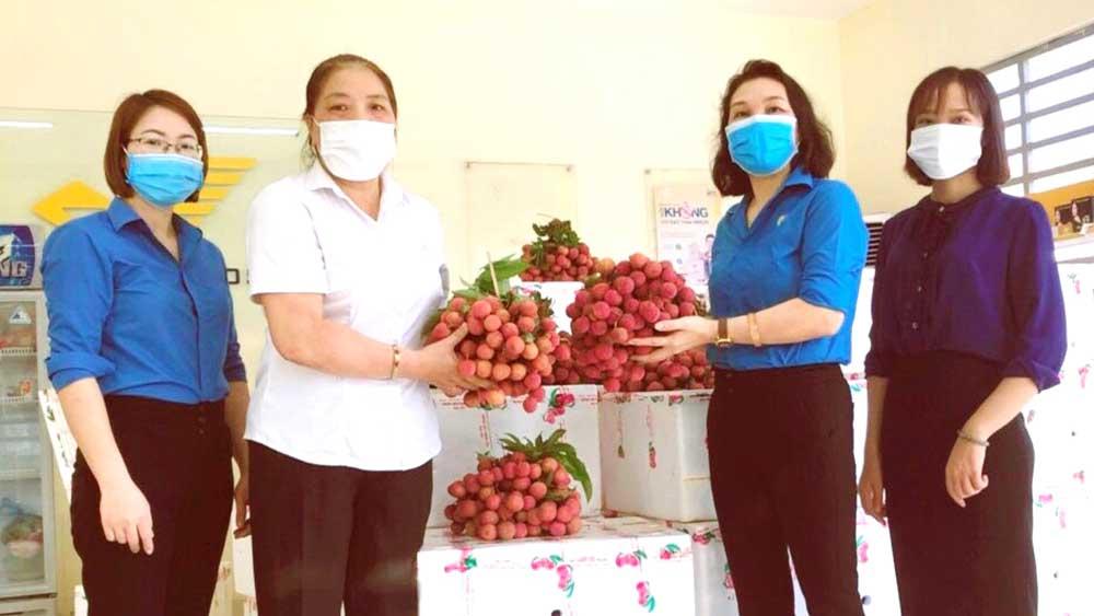 LĐLĐ tỉnh Phú Thọ, hỗ trợ, nông dân Bắc Giang, tiêu thụ, 50 tấn vải thiều