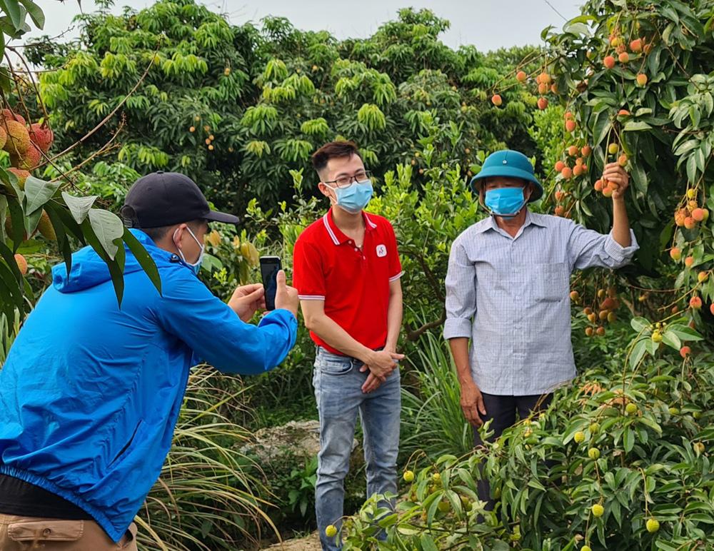 Bac Giang lychees, Sendo.vn, Bac Giang province, Luc Ngan lychee, e-Commerce, Digital Economy, farm produce