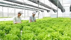 Nhiều doanh nghiệp Australia quan tâm đến lĩnh vực công nghệ nông nghiệp ở Việt Nam