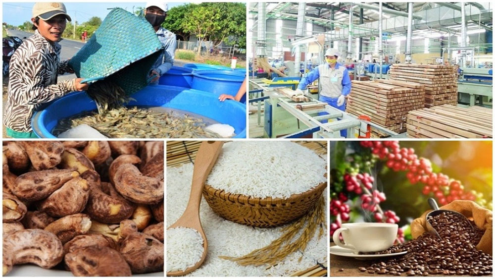 Agro-forestry-fishery export value, rises sharply, Covid-19 epidemic, production value, agriculture and rural development sector