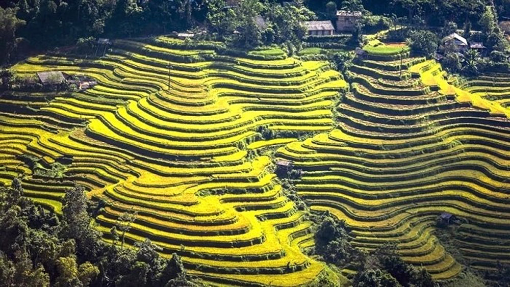 Culture and tourism week, terraced rice fields, Ha Giang province, socio-economic achievements, traditional cultural value