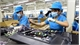 ADB offers US$4.6 million to help Vietnam strengthen PPPs and reform SOEs