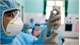 Vietnam, Israel discuss Covid vaccine aid