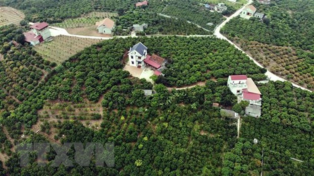 Bac Giang province, sustainably develop tourism, tourism potential and advantages,  important economic sector, tourism brand