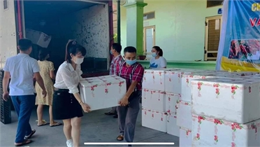 Hội Doanh nhân trẻ tích cực kết nối, giúp hội viên ổn định sản xuất