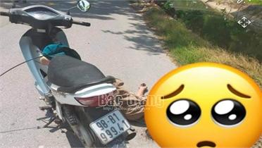 Bắc Giang: Người đàn ông đi xe máy tự ngã tử vong