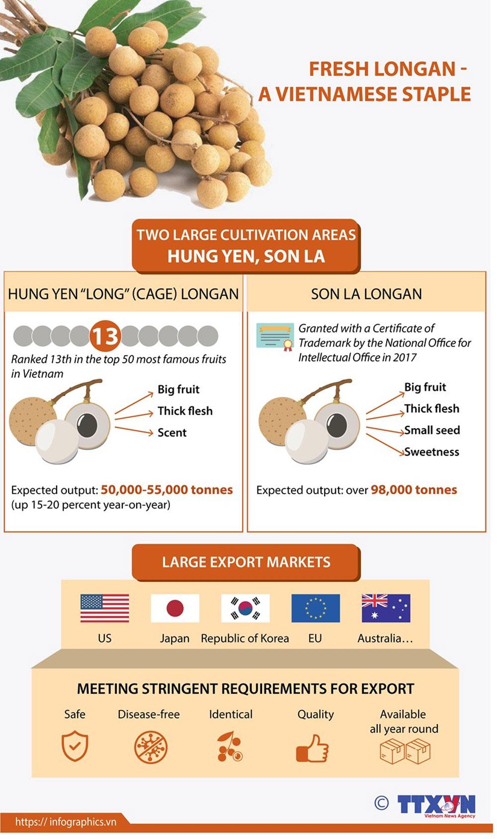 Fresh longan, Vietnamese staple, fastidious markets, export to foreign market, export market
