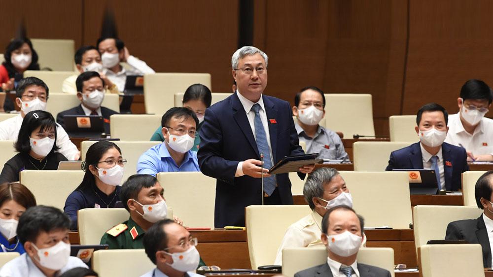 Cử tri Bắc Giang kiến nghị xây dựng, mở rộng 3 cây cầu huyết mạch