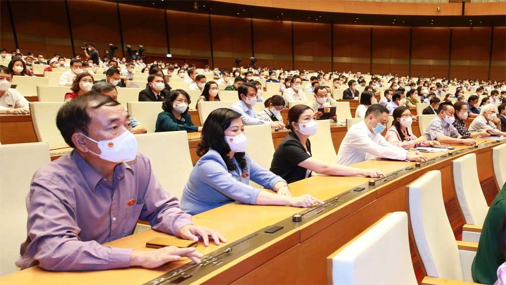 Quốc hội biểu quyết thông qua Nghị quyết về Chương trình giám sát năm 2022