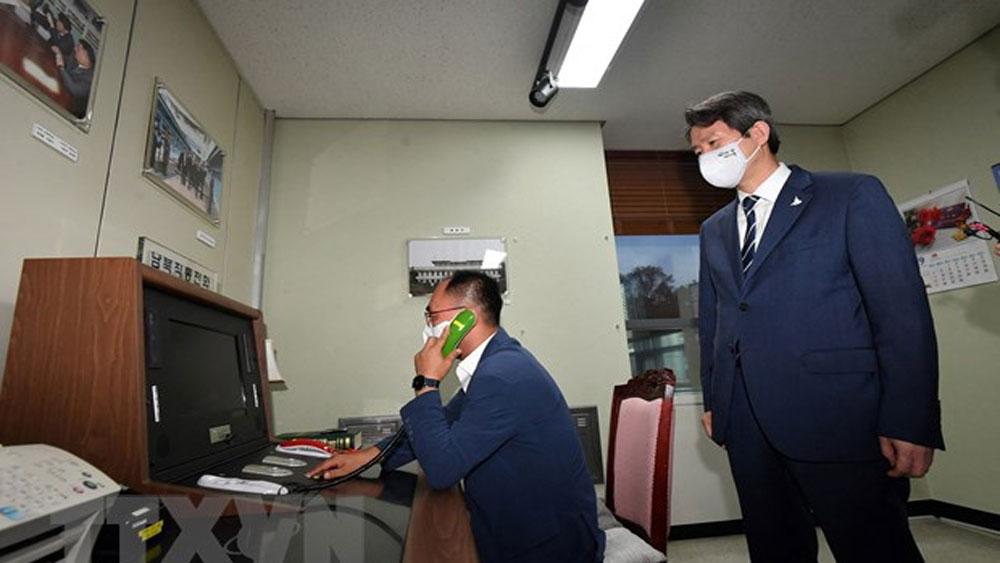 Hàn Quốc, xem xét , tổ chức hội nghị trực tuyến, Triều Tiên