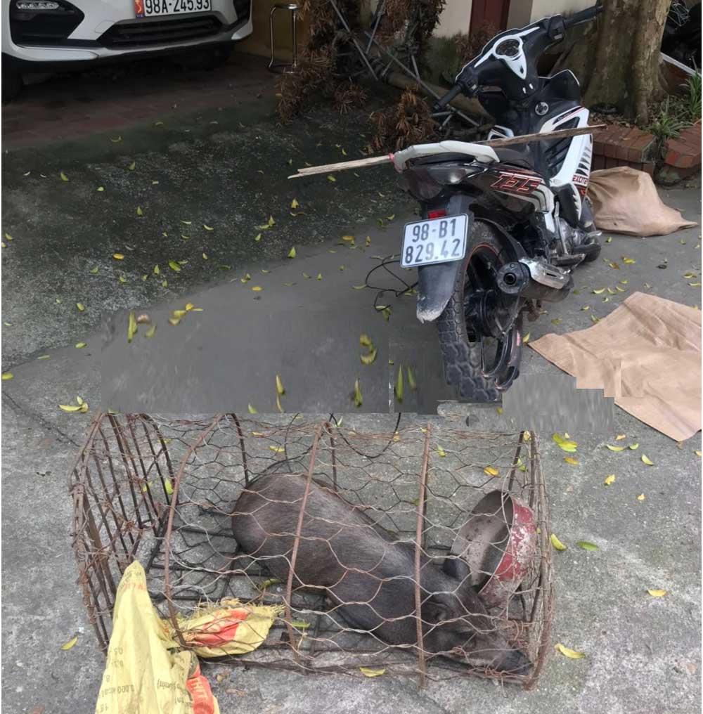 CATP Bắc Giang, điều tra , làm rõ, 2 đối tượng, Trộm cắp tài sản