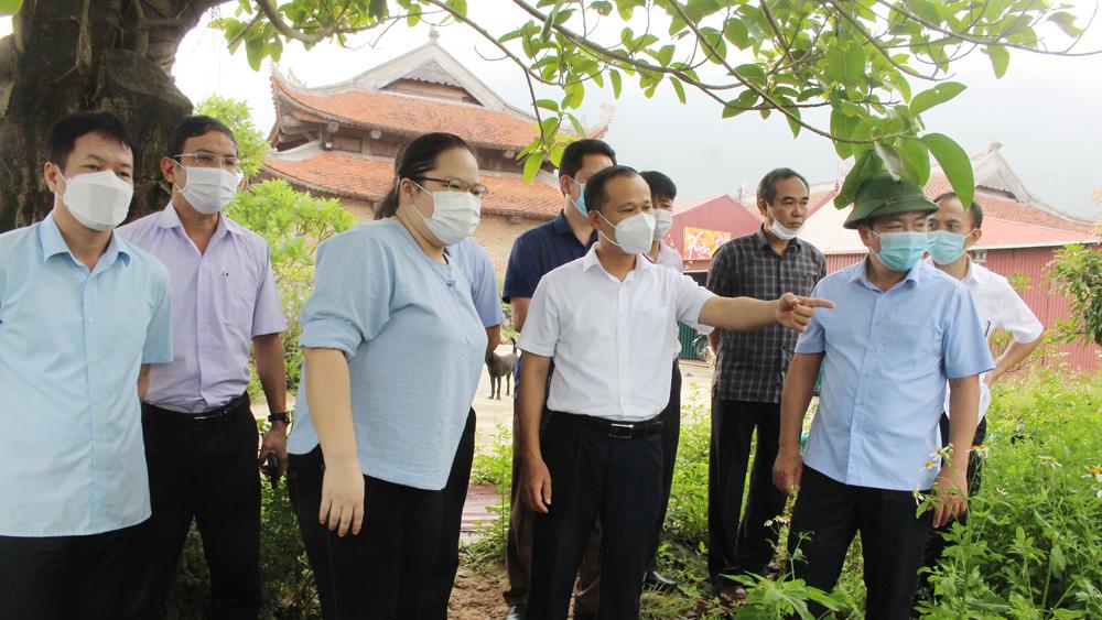 Đồng chí Mai Sơn, kiểm tra, dự án Tây Yên Tử, Sơn Động