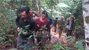 Bắc Giang: Vào rừng khêu nhựa trám, người đàn ông mất tích nhiều ngày