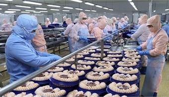 Vietnam sees 15.5% rise in exports in EU market