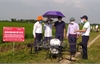 Tân Yên: Ứng dụng thiết bị bay không người lái phòng trừ sâu bệnh