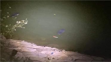Bắc Giang: Một phụ nữ đuối nước tại hồ Công viên Hoàng Hoa Thám