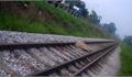 Bắc Giang: Xác định danh tính nạn nhân trong vụ TNGT đường sắt
