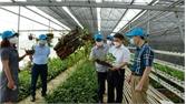 TP Bắc Giang xây dựng nông thôn mới: Hạ tầng khang trang, kinh tế khởi sắc