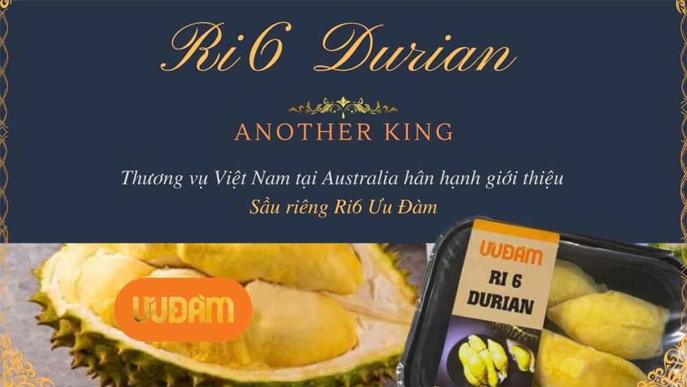 Vietnamese Ri6 durian 'sold out' in Australia