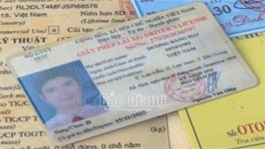 Bắc Giang: Sử dụng giấy phép lái xe ô tô giả chở khách