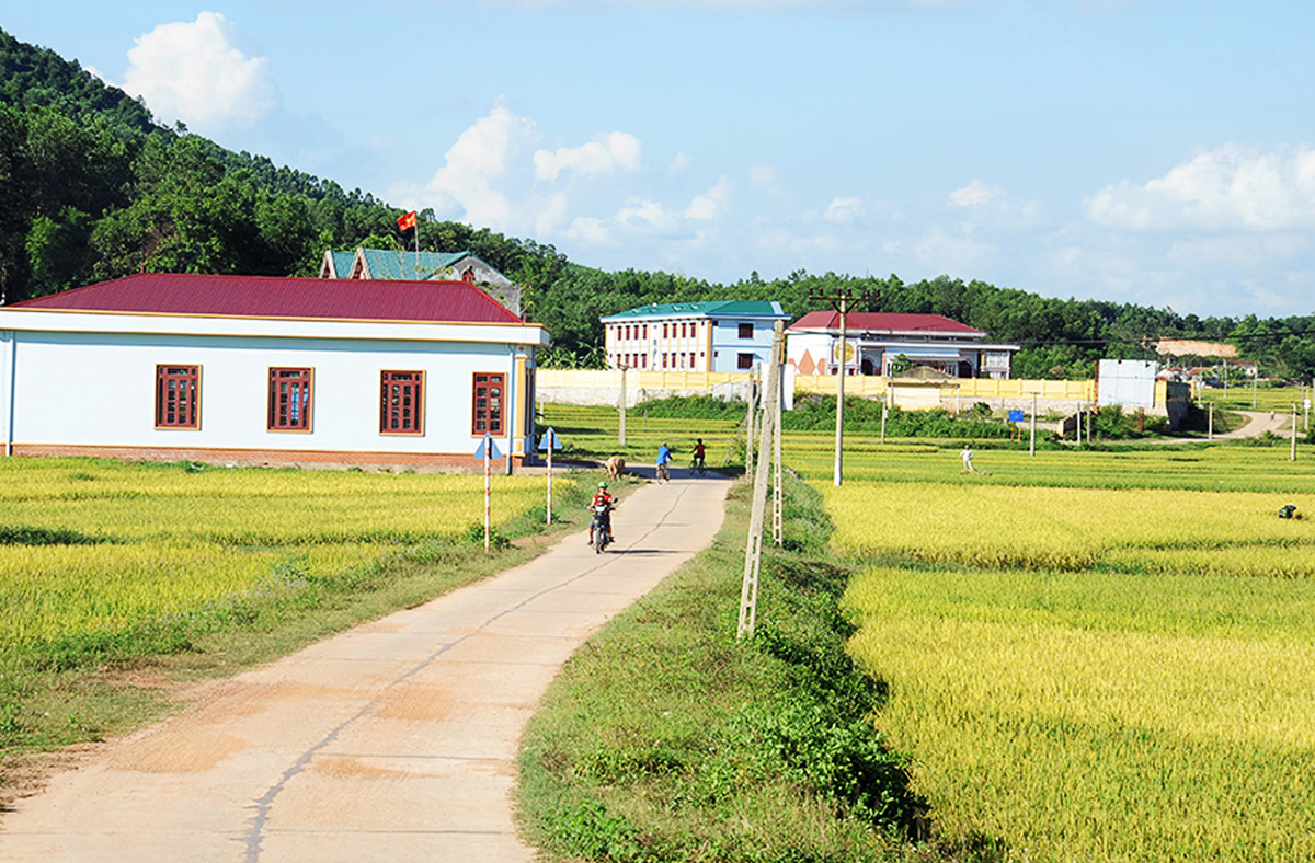 New prosperity, highland of Son Dong, Bac Giang province, Son Dong district, specially difficult districts, better quality of life