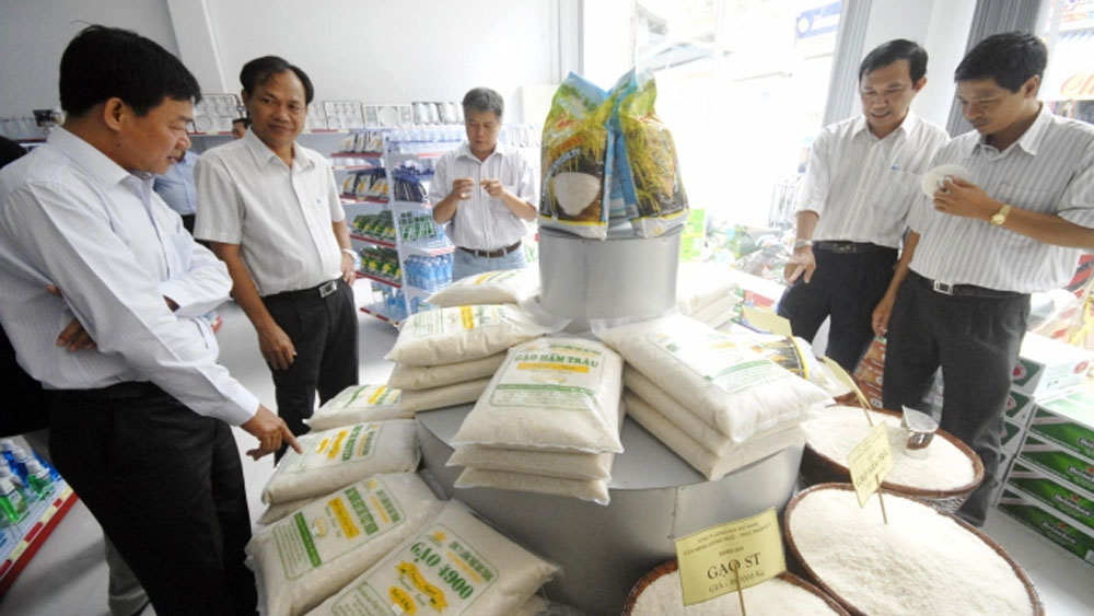 Loc Troi Group, confirming DNA, Vietnam, rice varieties, quality and origin,  Vietnam's rice, international markets