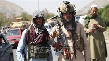Không thể xuyên tạc cuộc kháng chiến chính nghĩa dựa trên sự so sánh khập khiễng với Afghanistan