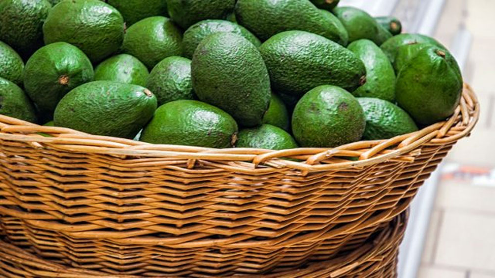 Avocado, the most exported fruit, Global production and consumption, avocado imports