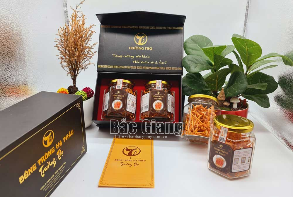 22 new OCOP products, Bac Giang province, One Commune One Product,  four-star products, 3 stars, promotion materials