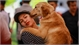 Stay away from pets, Covid-19 patients warned