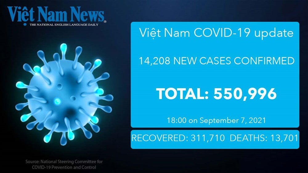 14,208 new Covid-19 cases 316 more deaths reported on Tuesday