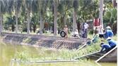 TP Bắc Giang: Thả bè thủy sinh làm sạch nước hồ khuôn viên Nguyễn Du