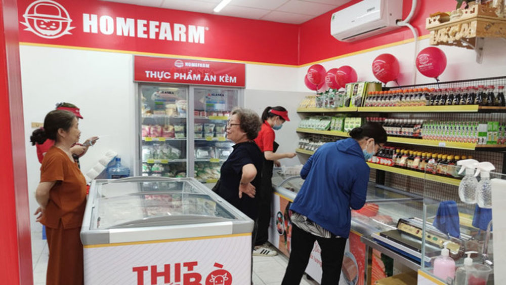 Alibaba-backed fund invests in retail chain Homefarm