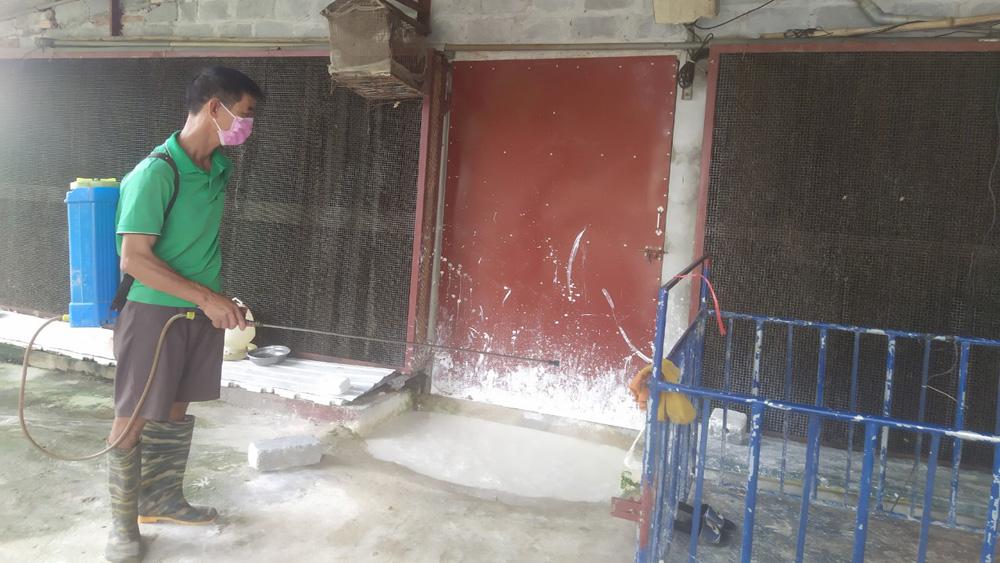 Bắc Giang: Chăn nuôi an toàn, đẩy lùi dịch bệnh