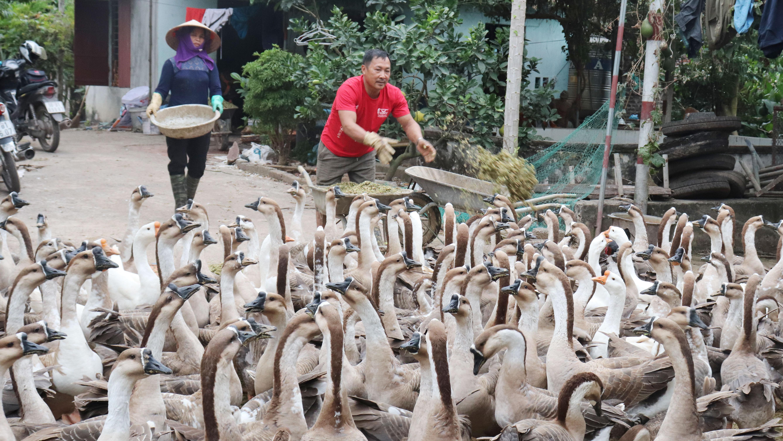 Bắc Giang; Lạng Giang; hỗ trợ; công nghệ cao; nông nghiệp