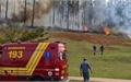 Máy bay lao xuống rừng ở Brazil, 7 người thiệt mạng
