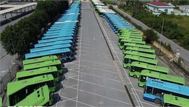 Hà Nội lên phương án cho xe buýt, xe khách liên tỉnh hoạt động trở lại