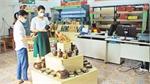 Yen The diversifies OCOP products
