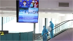Vietnam mulls 'green corridor' to resume domestic flights