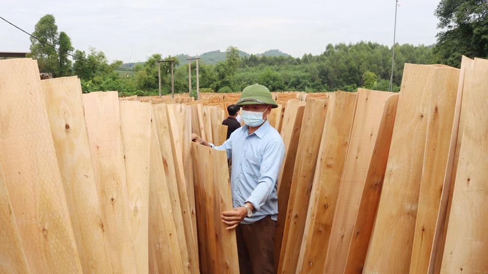 Lạng Giang, Bắc Giang, bóc gỗ, tiền tỷ, Hương Sơn, Chí Mìu