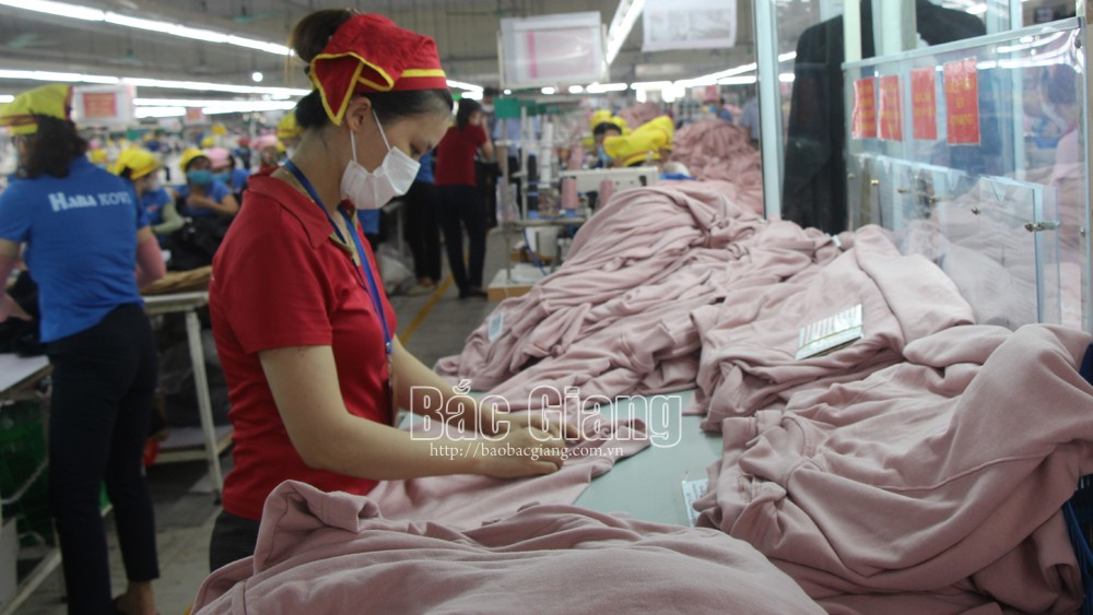 Nearly 1,000 businesses newly established in Bac Giang