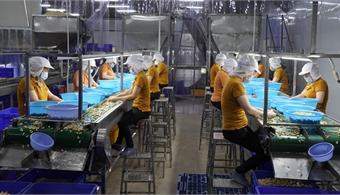 September bounce boosts Vietnam's FDI figures